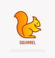 squirrel thin line icon modern vector image