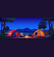 tents and burning bonfire on lake night forest vector image