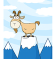 Longhorn On Top Of A Mountain Peak vector image vector image