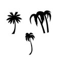 palm trees icon set isolated on white background vector image vector image