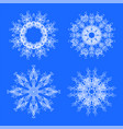 set different winter white snowflakes vector image vector image