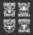 tshirt print with goat buffalo yak and gazelle vector image vector image