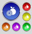 orange icon sign Round symbol on bright colourful vector image