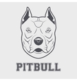 Pitbull head mascot vector image