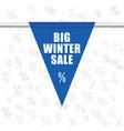 Big winter sale icon in blue
