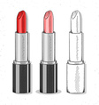 Set realistic sketch lipsticks Womens cosmetics vector image