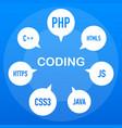 web development infographic programing skill vector image