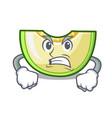 angry cartoon sweet melon slice to dessert