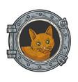 cat in ship window sketch vector image vector image
