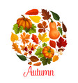 fall season poster of autumn leaf and pumpkin vector image vector image