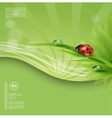 green spring or summer abstract background vector image vector image