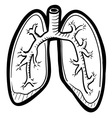 Human lungs doddle vector image vector image