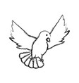 peace dove icon vector image