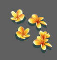 set bright yellow flowers vector image vector image