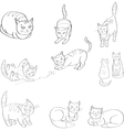 Set with the image of cats black and vector image vector image