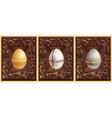 3d eggs vector image vector image