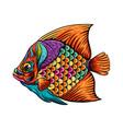 art surgeon fish entangle with rainbow vector image vector image