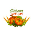 autumn welcome fall pumpkin greeting poster vector image