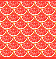 grapefruit seamless pattern vector image vector image
