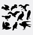 falcon eagle and hawk bird silhouette vector image vector image