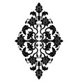 floral medallion for design vector image