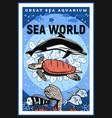 great sea aquarium oceanarium underwater show vector image vector image
