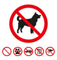 no dog sign on white background vector image vector image