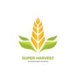super harvest - logo template cereal vector image