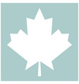maple leaf the white color icon vector image
