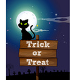 Black cat sitting on the sign at night vector image