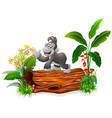 cute baby gorilla posing on tree stump vector image vector image