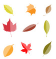 fall leaves set isolated on white background aut vector image