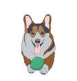 dog lies vector image