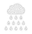 mesh rain cloud icon vector image vector image