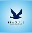seagull logo icon designs vector image