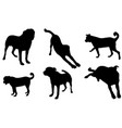 set different dog silhouettes vector image vector image