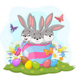 three easter bunnies in easter egg vector image vector image