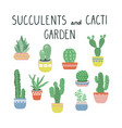 cacti and succulents set cactus vector image vector image