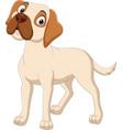 cartoon dog isolated on white background vector image vector image