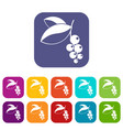 currant berries icons set flat vector image vector image