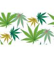 marijuana colorful leaf vector image vector image