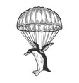 penguin bird fly with parachute sketch vector image vector image