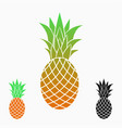 pineapples or ananas exotic fruit vector image