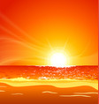 warm tropical beach sunset vector image vector image