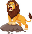 cartoon lion roaring isolated on white background vector image vector image
