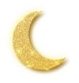 crescent islamic for ramadan kareem design element vector image vector image