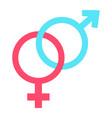 heterosexual flat icon valentines day vector image