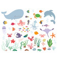 sea animals and water plants vector image