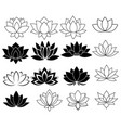 set stylized lotuses collection lotus vector image
