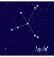 The constellation Aquila star in the night sky vector image vector image
